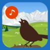 Chirp! Bird Song of Britain and Europe (original)