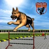 Полиция обучения собаки школы
