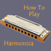 Harmonica Video Guide - Step By Step Video Lessons Guide for Beginners