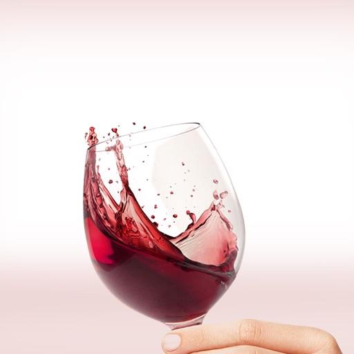 自制葡萄酒大全 -  如何制作葡萄酒知识百科自学指南视频教程和技巧