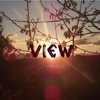 View view many different