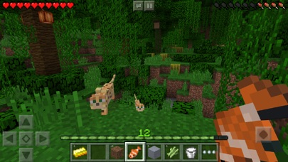 Screenshot #2 for Minecraft