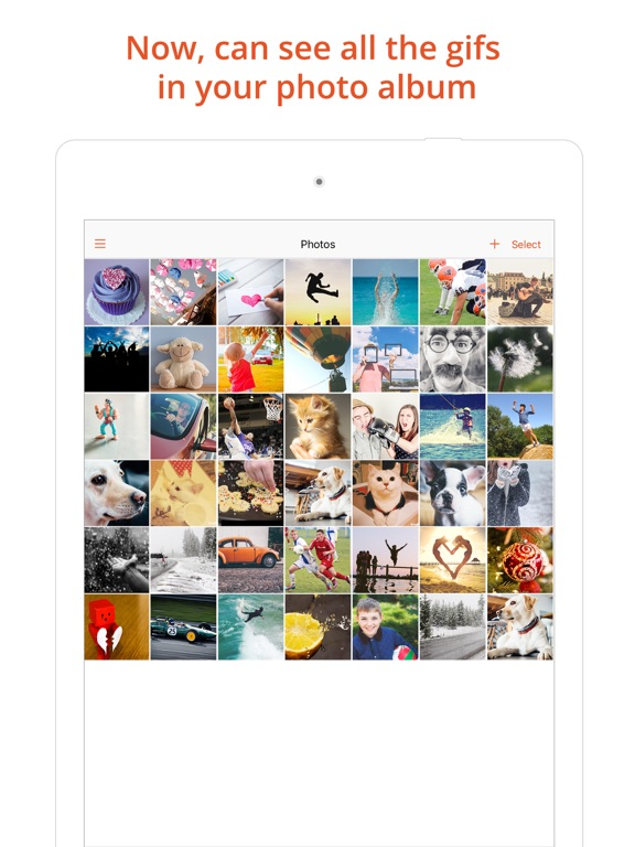 Gif viewer pro animated gif player album on the app store ipad screenshot 1 negle Gallery