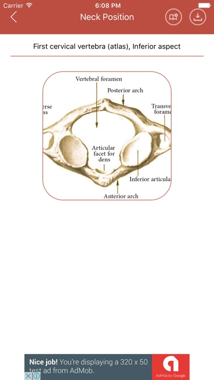 Human Anatomy Dictionary Medical Terminology By Han Jin Yong