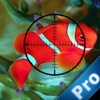A Shark Sniper Pro : Underwater Hunting Challenge