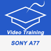 Videos Training For Sony A77