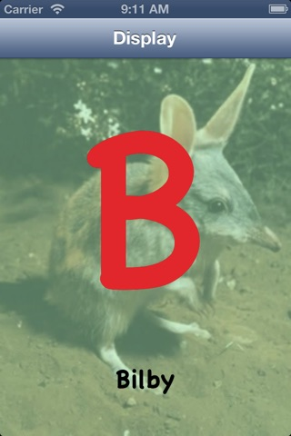 Australian Animal Alphabet screenshot 3
