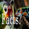 Animal Facts SMS Messages - Latest Facts / New Facts facts on animal welfare