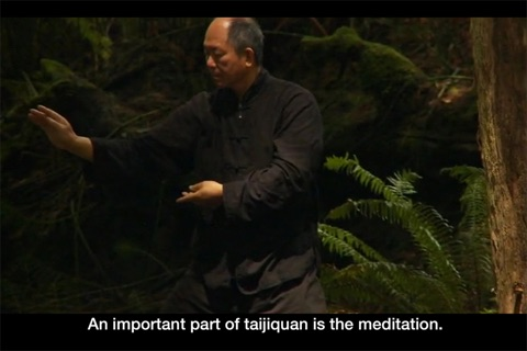 Yang Tai Chi for Beginners Part 2 & 3 screenshot 3