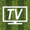 Javier Benajes - TV Fútbol Online portada
