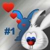 Send a Bunny
