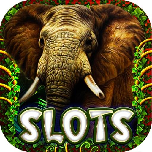 Wild Jungle Lucky Slots Free Casino Safari Jackpot iOS App