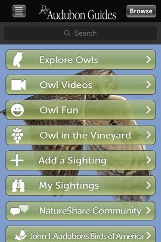 Audubon Owls Guide screenshot 1