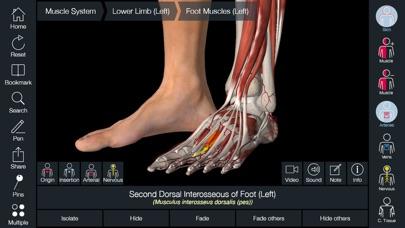 Essential Anatomy 5 screenshot1