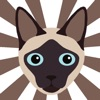 Catmoji - Cat Sticker Pack for Cat Lovers