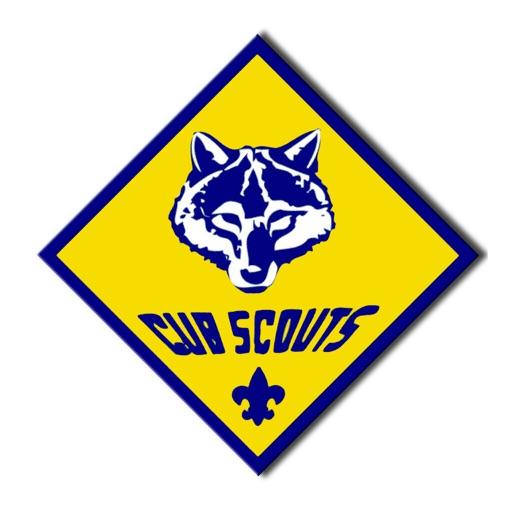 Cub Scout Pack 379