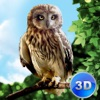 Forest Owl Simulator Full - Be a wild bird!