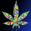 3D Weed Обои HD: Котировки