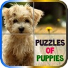 Puzzles of Puppies Free