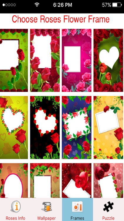 Rose flower photo frame wallpaper