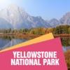 Tourism Yellowstone National Park