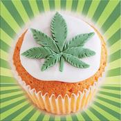 Weed Cookbook app review