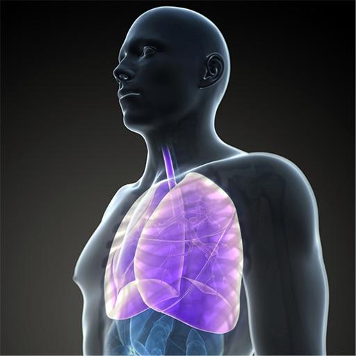 Cardiopulmonary Anatomy:Physiology and Respiratory Care