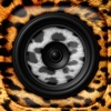 Animal Sounds Free Ringtone.s-Animal Funny Effects tones and