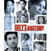 Grey's Anatomy, Saison 2