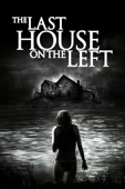 Dennis Iliadis - The Last House On the Left (2009)  artwork