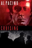 Cruising (iTunes)