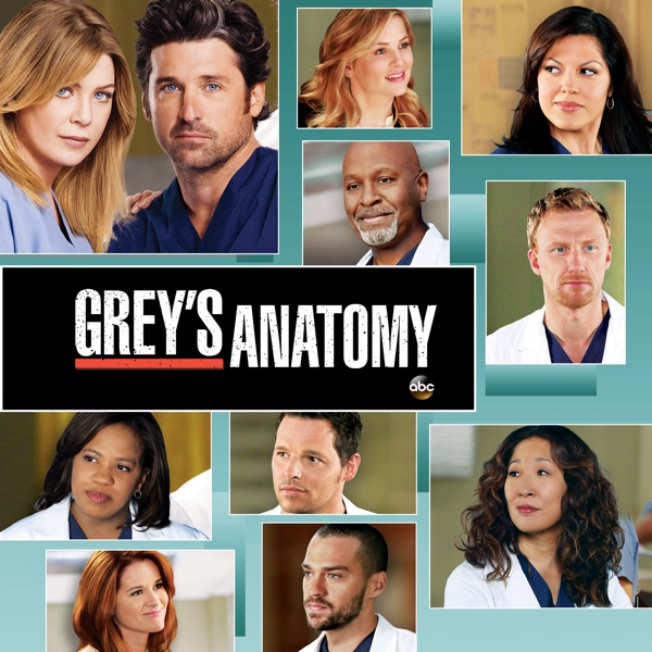 Watch Grey's Anatomy Episodes | Season 9 | TVGuide.com