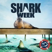 Shark Week, Season 29 - Shark Week Cover Art