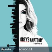 Grey's Anatomy, Saison 13