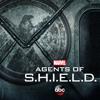 Marvel's Agents of S.H.I.E.L.D. - Principia  artwork