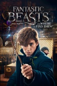 David Yates - Fantastic Beasts and Where to Find Them  artwork