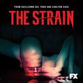 The Strain, Season 1 - The Strain Cover Art