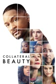 David Frankel - Collateral Beauty  artwork