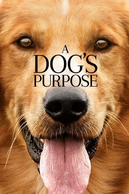 The Dog S Purpose Movie