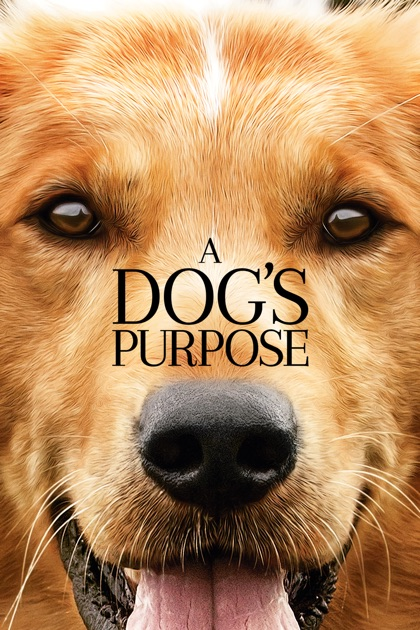 Preview Of A Dog S Purpose