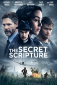 Jim Sheridan - The Secret Scripture  artwork