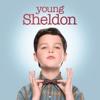 Sheldon, Newton und Euklid