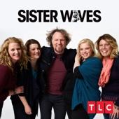 Sister Wives - Sister Wives, Season 12  artwork