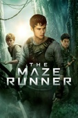 Wes Ball - The Maze Runner  artwork