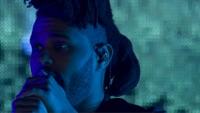 Apple Music Festival: London 2015 (Video Album) - The Weeknd & Lana Del Rey