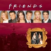 Friends, Season 10 - Friends Cover Art
