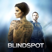 Blindspot, Staffel 1