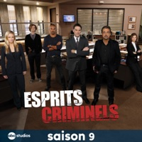 t l charger esprits criminels saison 9 24 pisodes. Black Bedroom Furniture Sets. Home Design Ideas