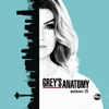 Grey's Anatomy - Panser ses plaies  artwork