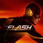 The Flash, Saison 1 (VF)